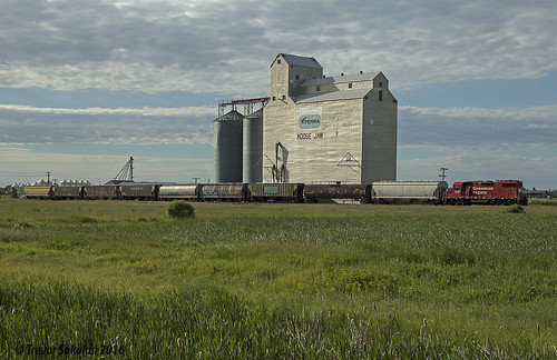canadian canada cp canadianpacific cprail railway railroad rail railfan railfanning trains train trainspotting tracks elevator grain grainelevator moosejaw prairie prairies hopper gp382 emd gmd diesel locomotive local branchline branch saskatchewan sk