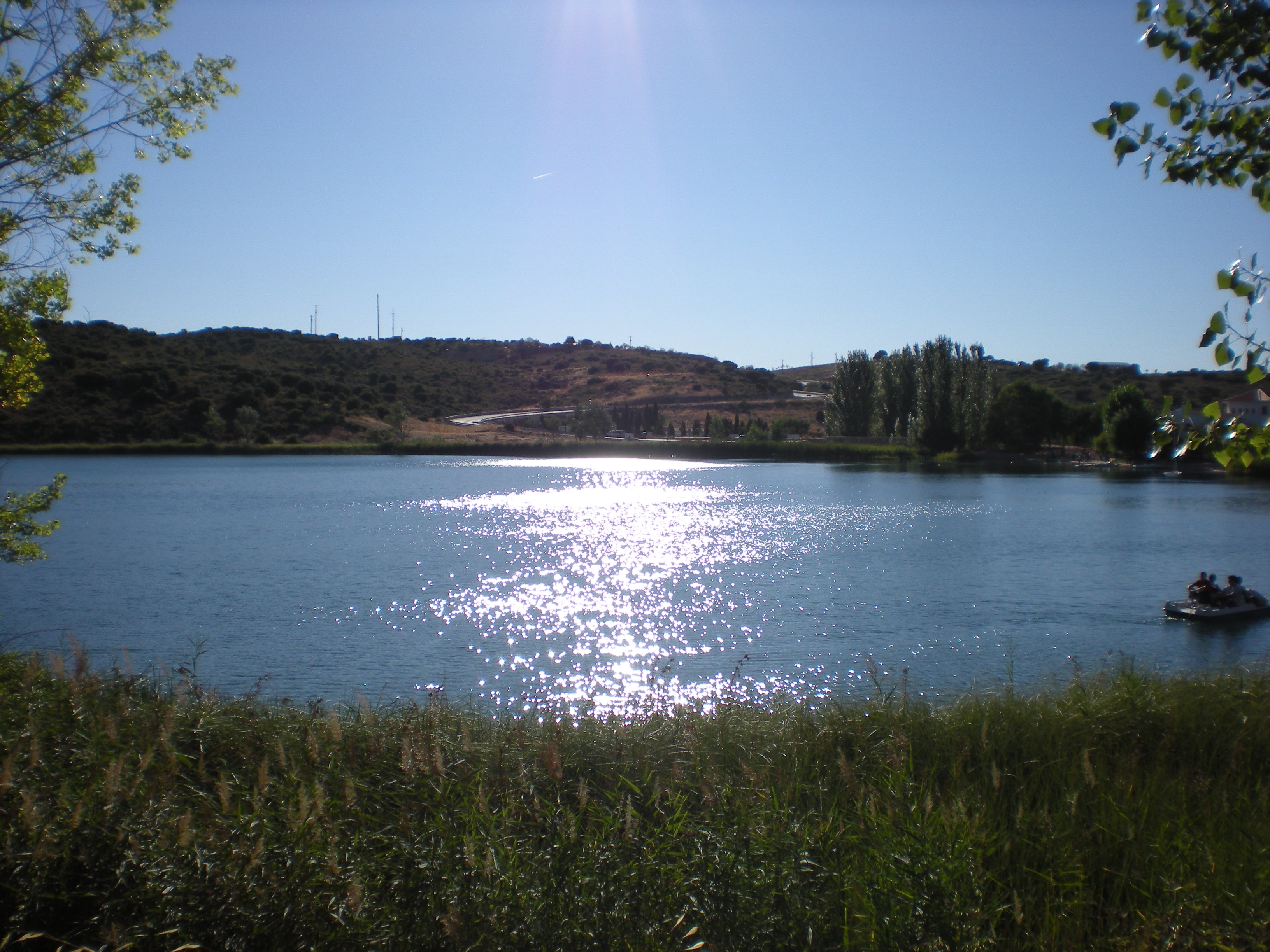 La laguna del Rey y Ruidera, paso de una cañada real. Autor, M, Peinado