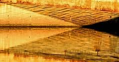 Under the Bridge (Sunrise Edition)