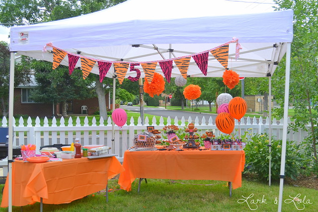 DSC_0658 & A Tiger Birthday Party! - Lark \u0026 Lola