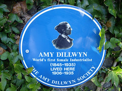 Photo of Amy Dillwyn blue plaque