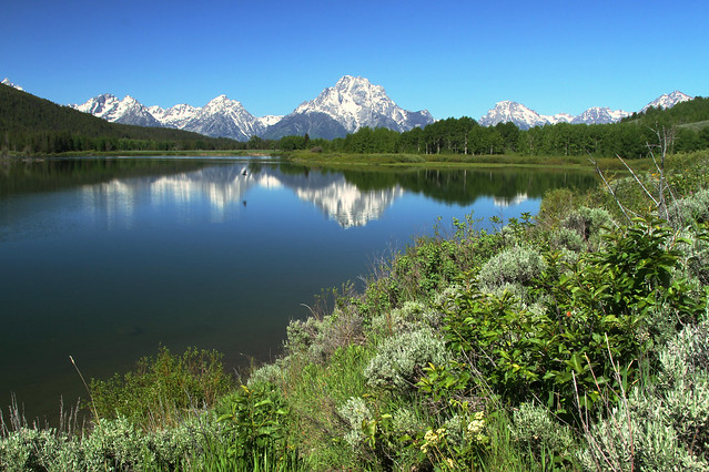 Oxbow Bend: Scenic Wonder
