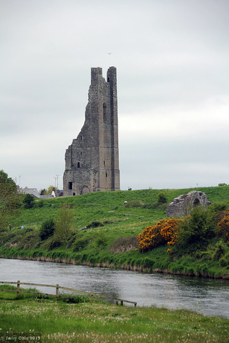 county ireland building heritage abbey stone architecture river town ruins ruin co trim stmary boyne meath éire republicof yellowsteeple aimg1798