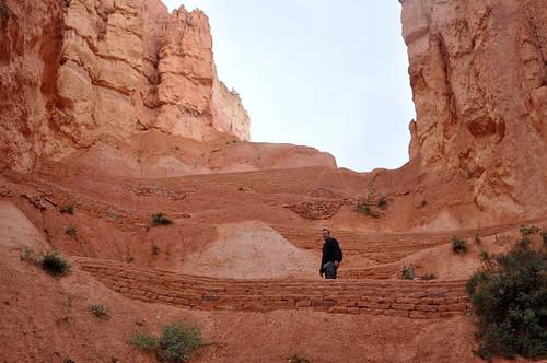 Bryce Canyon #17