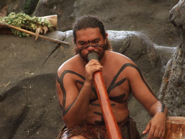 青年毛利人