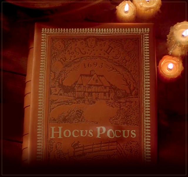 hocus-pocus-book