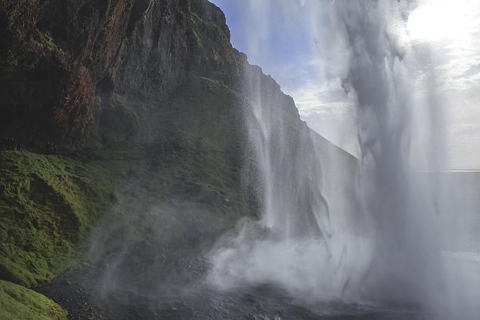 Iceland_Spiegeleule_August2014 215