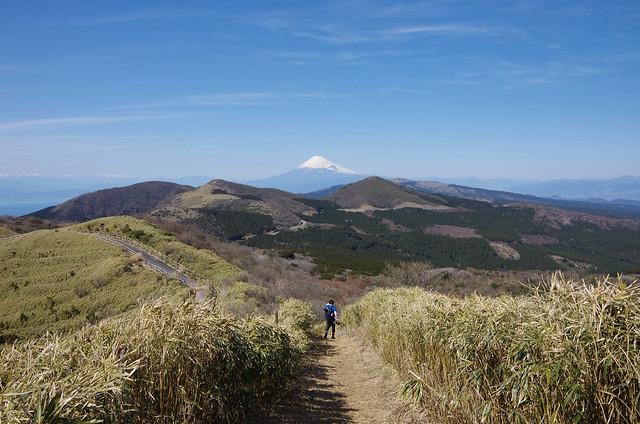 2014-03-31_00577_伊豆稜線トレイル.jpg