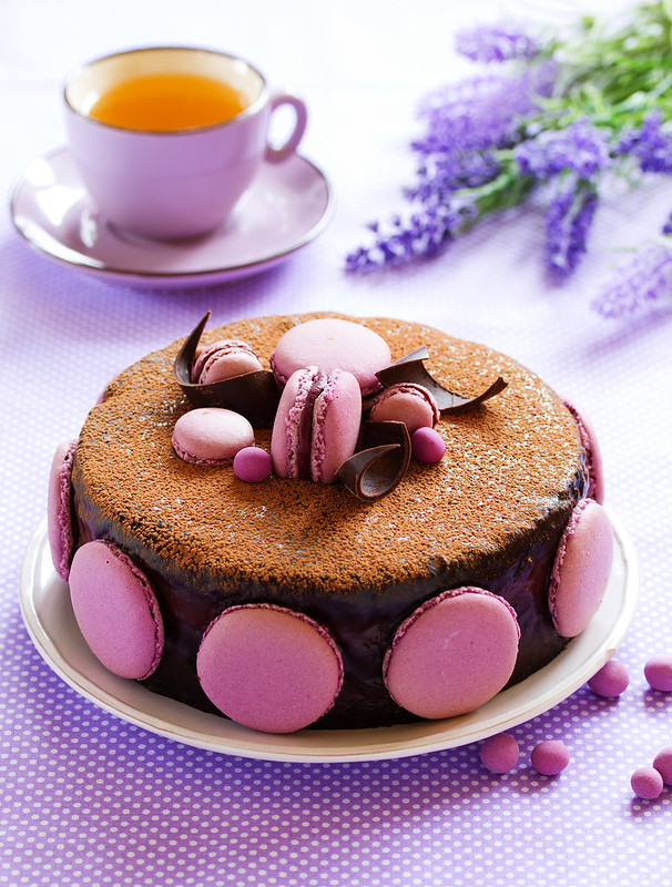 Chocolate cake with black currant.