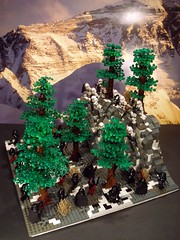 SW TOR Forest Battle