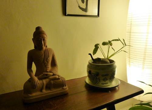Buddha and houseplant