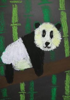 Panda by June Q.