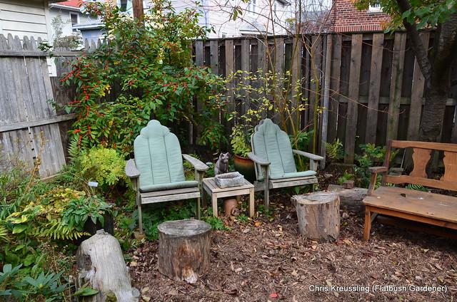 The Gardener's Nook, pre-shrub transplant, November 2014
