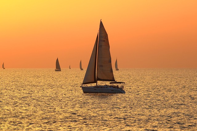 sailing at the golden hour