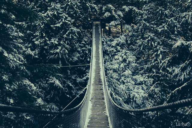 First snow of the season-Lynn Canyon Suspension Bridge