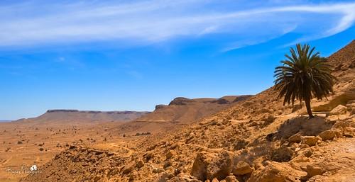 africa mountains sahara landscape desert tunisia ngc palm tataouine
