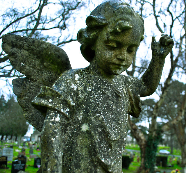 7-365 Graveyard Angel