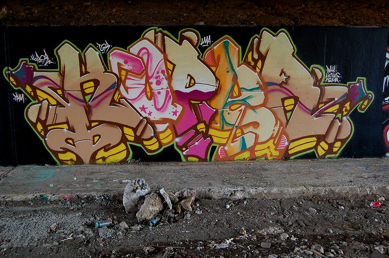 DSC_558