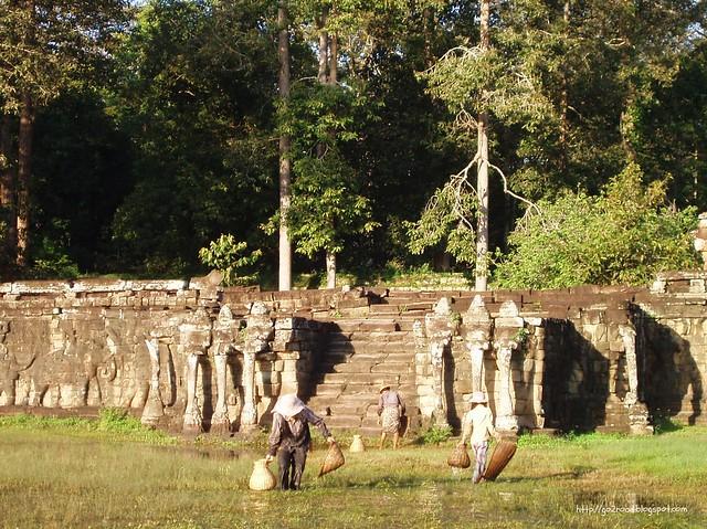 Терраса слонов, Ангкор в Камбодже