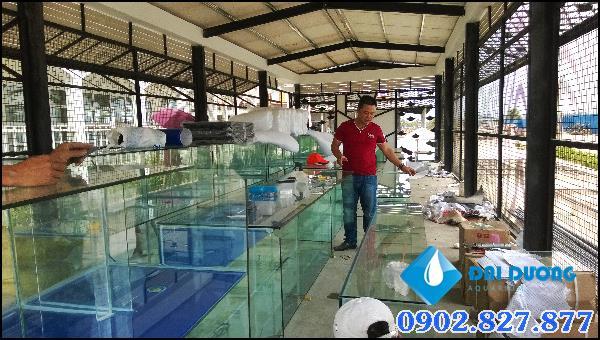 Hồ hải sản casino shang campuchia