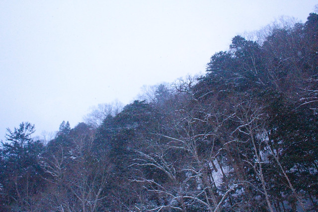 20140323-手白沢温泉-0442.jpg