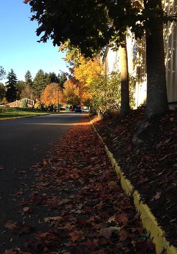 Autumn-Walk-2