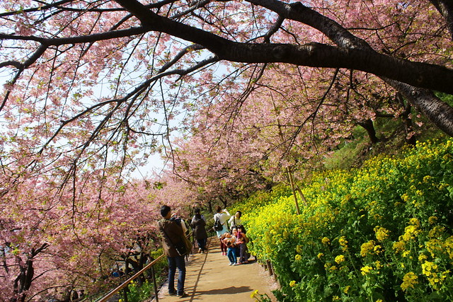 2014-03-16_00115_高松山