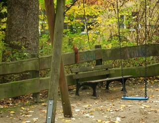 Eichhörnchen auf Spielplatz
