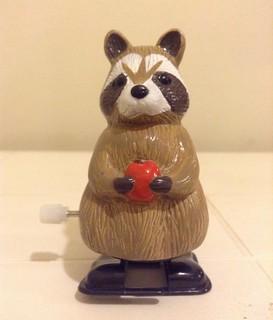 Raccoon with an apple