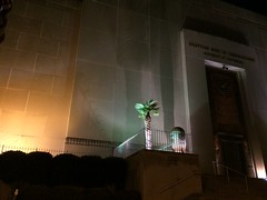 Palms at the Scottish Rite Temple November 2014