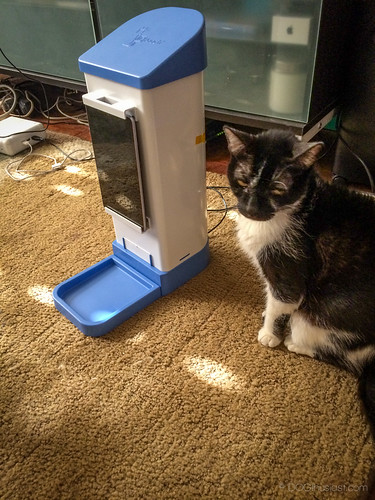 Dog Treat Dispenser >> icPooch Review: Using the icPooch Internet Treat Dispenser, a dog's reaction... and does it work ...