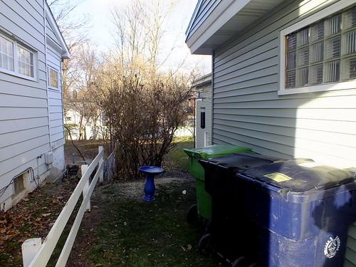 bird bath and bird feeder