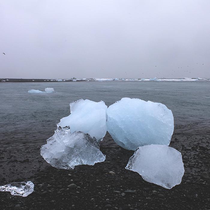 Iceland_Spiegeleule_August2014 047