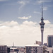 Auckland, NZ by Mikey Mack