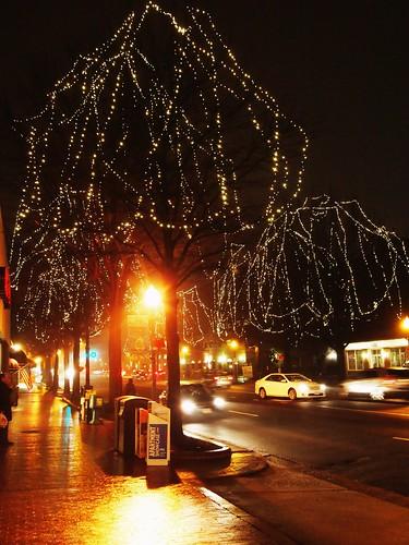 Christmas Lights in Falls Church (01)