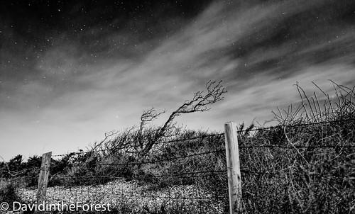 longexposure beach night clouds stars blackwhite warsash