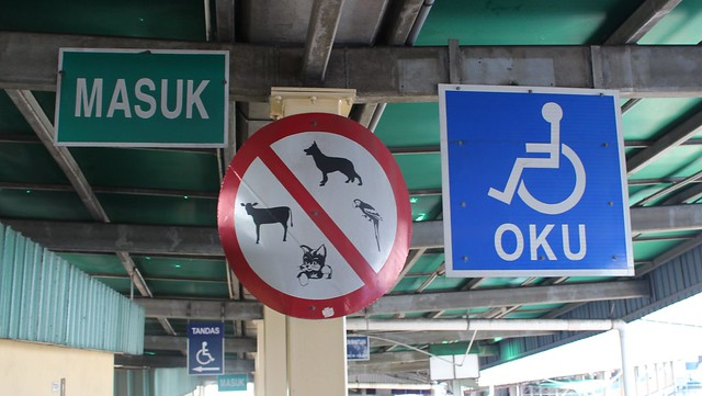 No Parrots but Wheelchairs are OKU