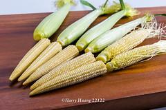 Harry_22122,玉米筍,玉米,甜玉米,珍珠筍,�…