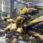GBWC2014_World_representative_exhibitions-12