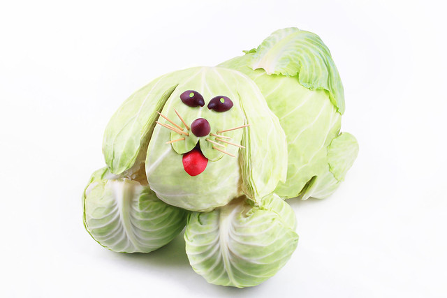 Cabbage Doggie
