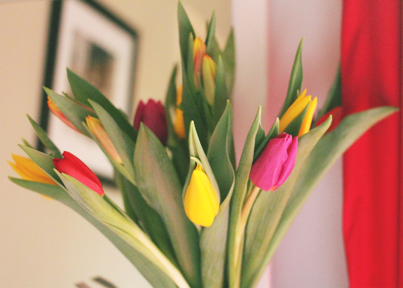 Pretty Tulips, Bumpkin Betty