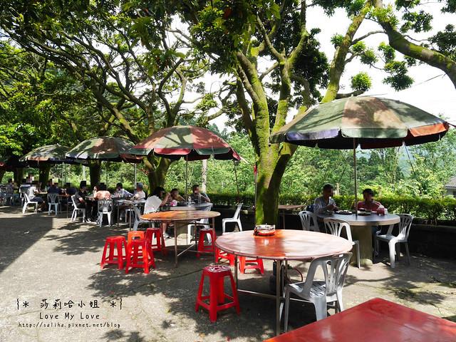 陽明山竹子湖餐廳美食杉木林 (2)