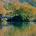 Gyoen reflection (新宿御苑景観)