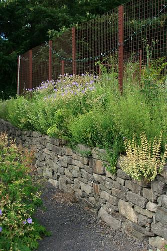 29_vegetable_garden_fence