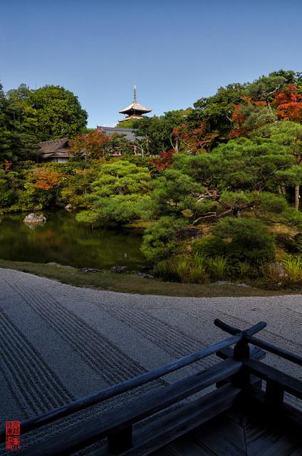 「望む」 仁和寺 - 京都