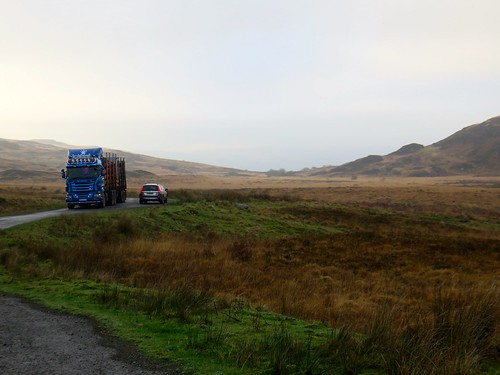 scotland116