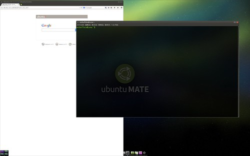 ubuntu-mate-terminal1