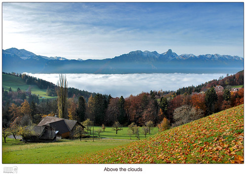 travel autumn sky mountains alps nature colors clouds forest canon landscape eos schweiz switzerland europe lonelyplanet dslr nationalgeographic berneseoberland beautifulearth 600d thebeautyofnature goldiwil