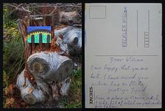 Postcard to William Keckler:  on Location:  during a Stroll at an Urban Interstice between Danube and Railway / Backside of the Postcard ~ Postkarte am Originalschauplatz / Text auf der Rückseite - Lustwandeln auf der Gstetten zwischen Donau und Schienen