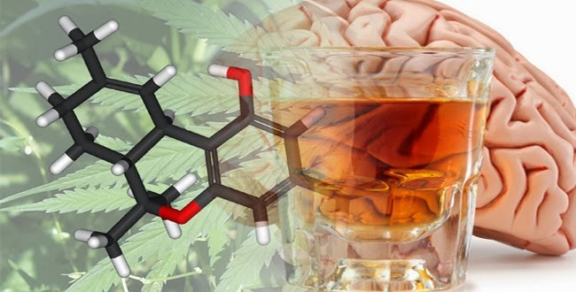 Cannabis Can Reduce Brain Damage Caused By Alcohol